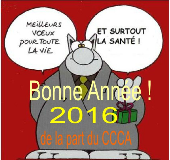 Voeux_CCCA_2016